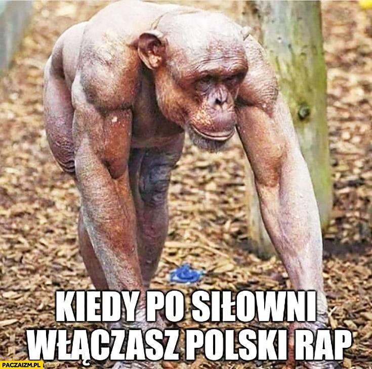 Kiedy po siłowni włączasz polski rap przypakowana małpa