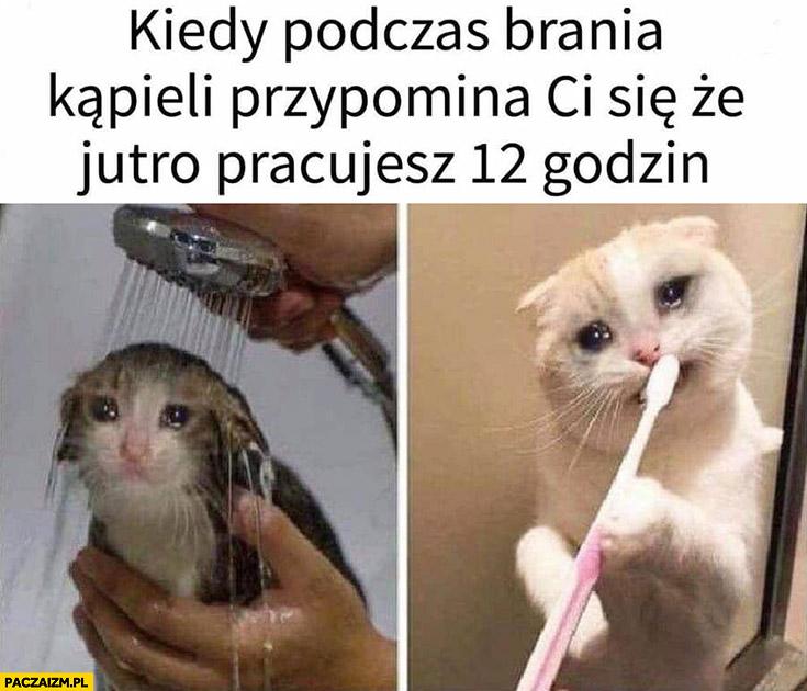 Kiedy podczas brania kąpieli przypomina Ci się, że jutro pracujesz 12 godzin kot płacze
