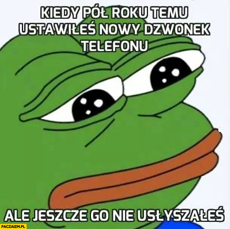 Kiedy pół roku temu ustawiłeś nowy dzwonek telefonu ale jeszcze go nie usłyszałeś smutna żaba Pepe