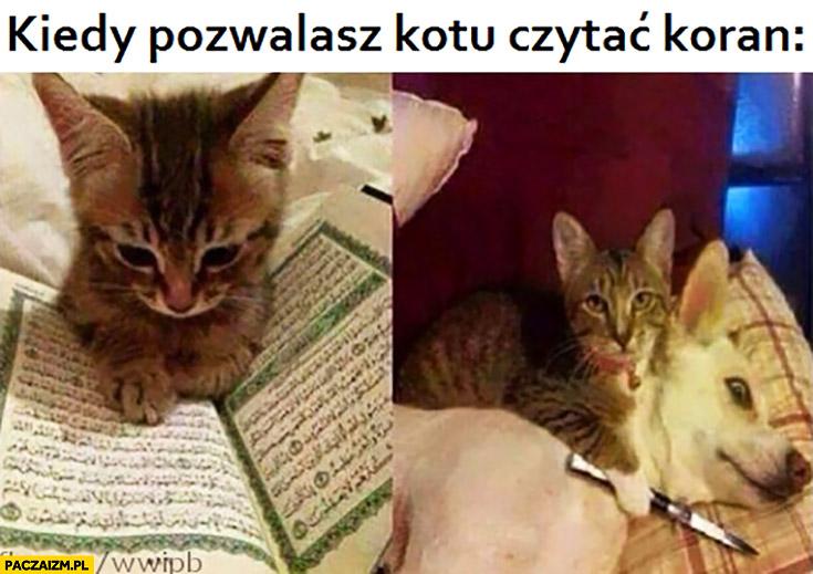 Kiedy pozwalasz kotu czytać koran z nożem do psa