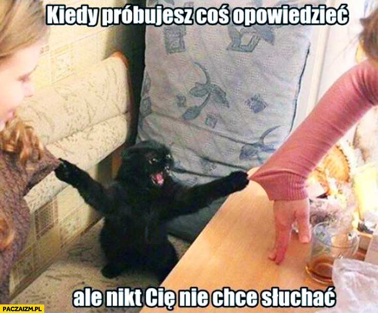 Kiedy próbujesz coś opowiedzieć ale nikt nie chce Cię słuchać zły kot