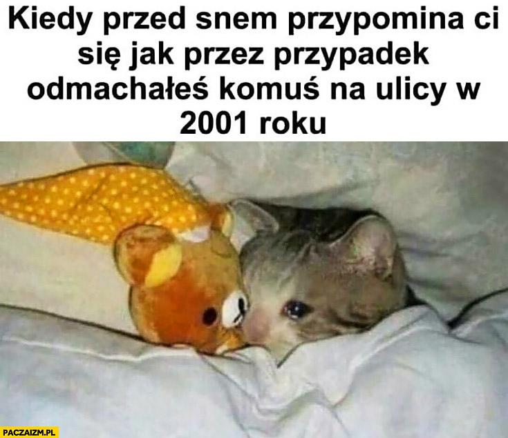 Kiedy przed snem przypomina Ci się jak przez przypadek odmachałeś komuś na ulicy w 2001 roku smutny kotek płacze