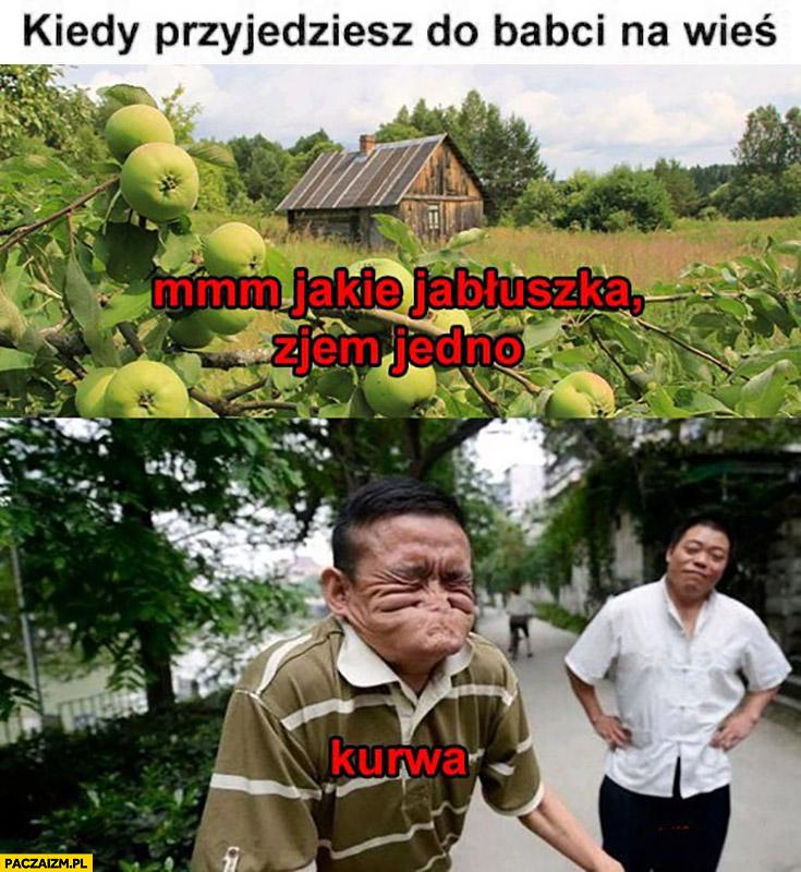 Kiedy przyjedziesz do babci na wieś mmm jakie jabłuszka zjem jedno kurna kwaśne papierówki