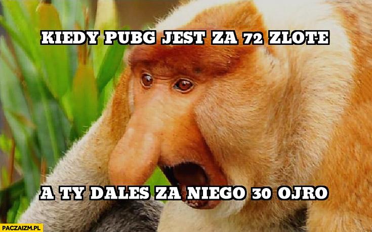 Kiedy PUBG jest za 72 złote a Ty dałeś za niego 30 euro typowy Polak nosacz małpa