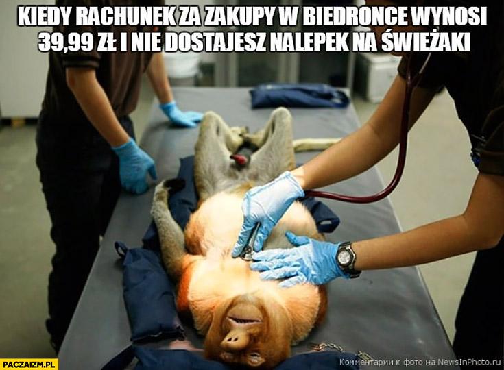 Kiedy rachunek za zakupy w Biedronce wynosi 39,99zł i nie dostajesz nalepek na świeżaki reanimacja zawał typowy Polak nosacz małpa