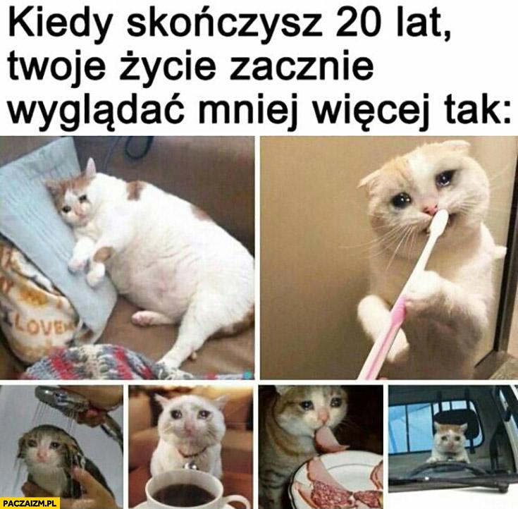 Kiedy skończysz 20 lat Twoje życie zacznie wyglądać mniej więcej tak smutny kot