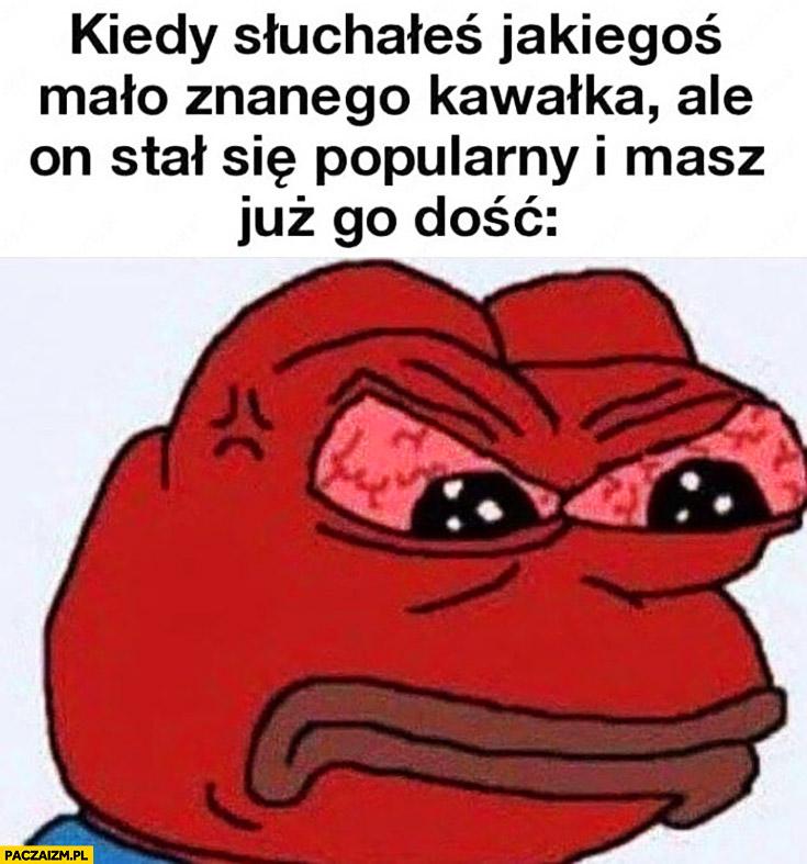 Kiedy słuchałeś jakiegoś mało znanego kawałka ale stał się popularny i masz go już dość zły wściekły żaba Pepe