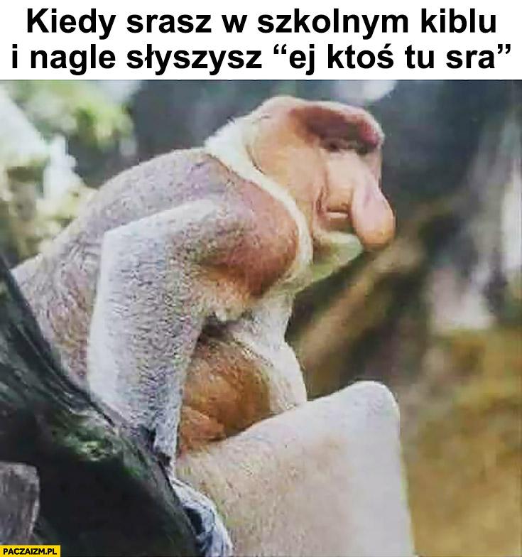 Kiedy srasz w szkolnym kiblu i nagle słyszysz ej ktoś tu sra typowy Polak nosacz małpa