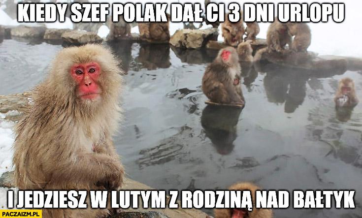 Kiedy szef Polak dał Ci 3 dni urlopu i jedziesz w lutym z rodziną nad Bałtyk typowy Ukrainiec małpa nosacz Polak
