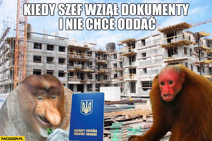 Kiedy szef wziął dokumenty i nie chce oddać Ukrainiec typowy Polak nosacz małpa