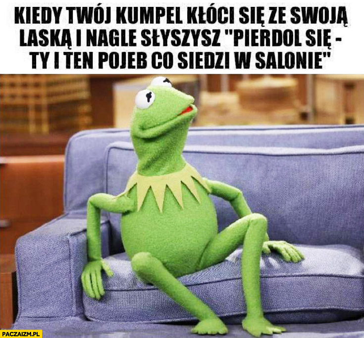 Kiedy Twój kumpel kłóci się ze swoją laską i nagle słyszysz piedziel się Ty i ten debil co siedzi w salonie Kermit