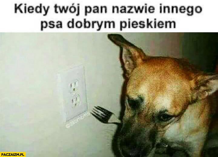 Kiedy Twój Pan nazwie innego psa dobrym pieskiem, Pies z widelcem gniazdko samobójstwo