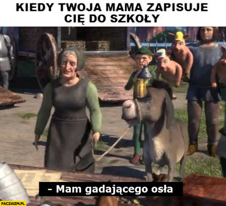 Kiedy Twoja mama zapisuje Cię do szkoły mama gadającego osła