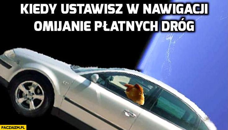 Kiedy ustawisz w nawigacji omijanie płatnych dróg typowy Polak nosacz małpa w kosmosie
