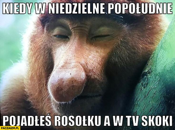 Kiedy w niedzielne popołudnie pojadłeś rosołku a w TV skoki typowy Polak nosacz małpa