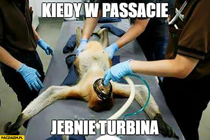 Kiedy w Passacie jebnie turbina typowy Polak nosacz sztuczne oddychanie intubacja