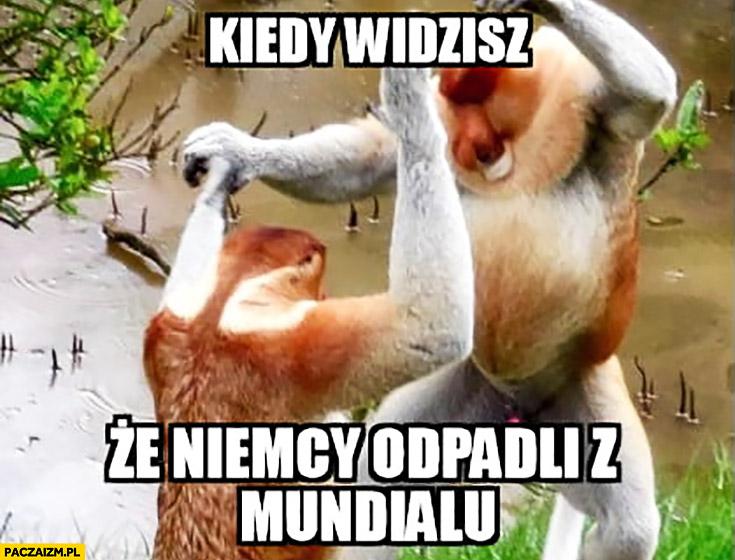 Kiedy widzisz, że Niemcy odpadli z mundialu typowy Polak nosacz małpa tańczy