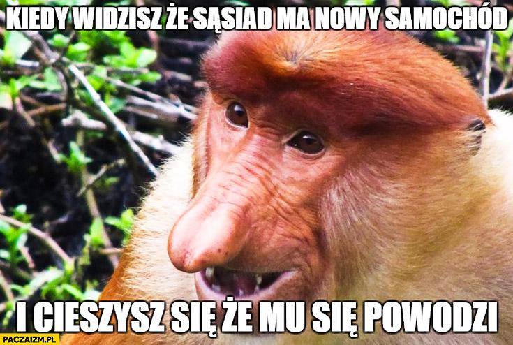 Kiedy widzisz, ze sąsiad ma nowy samochód i cieszysz się, że mu się powodzi typowy Polak nosacz małpa