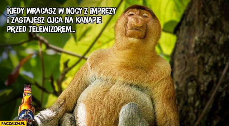 Kiedy wracasz w nocy z imprezy i zastajesz ojca na kanapie przed telewizorem typowy Polak nosacz małpa