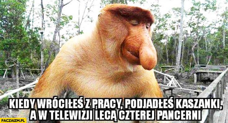 Kiedy wróciłeś z pracy, podjadłeś kaszanki a w telewizji lecą czterej pancerni zadowolony typowy Polak nosacz małpa