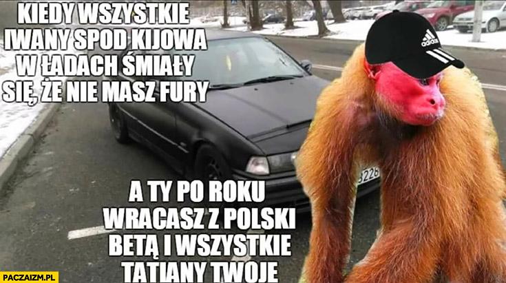 Kiedy wszystkie Iwany spod Kijowa w Ładach śmiały się, że nie masz fury a Ty po roku wracasz z Polski Betą i wszystkie Tatiany Twoje