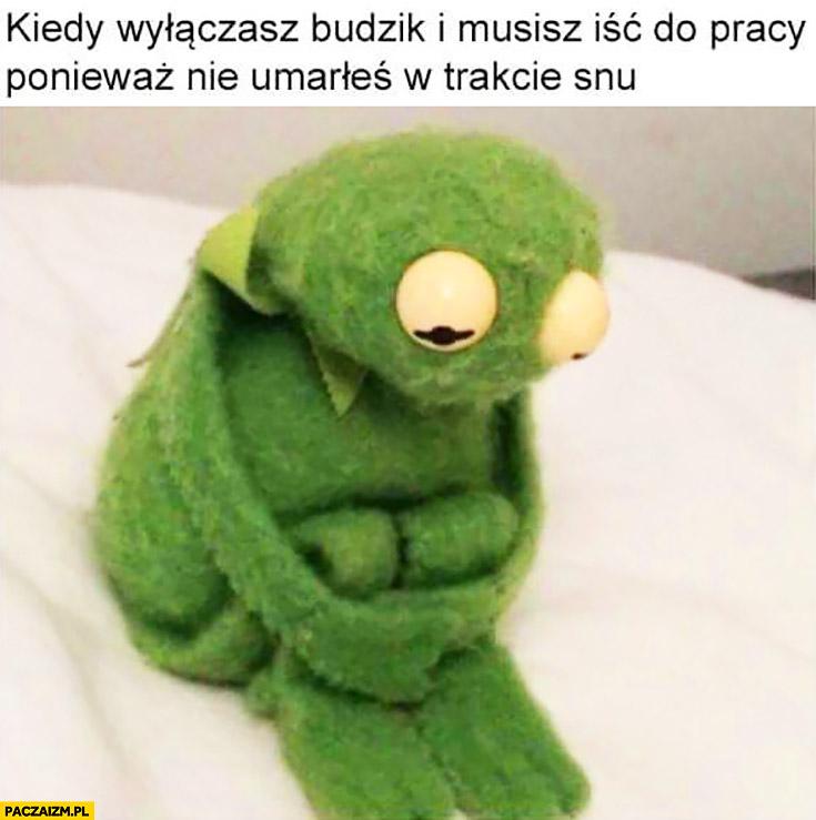 Kiedy wyłączasz budzik i musisz iść do pracy ponieważ nie umarłeś w trakcie snu Kermit