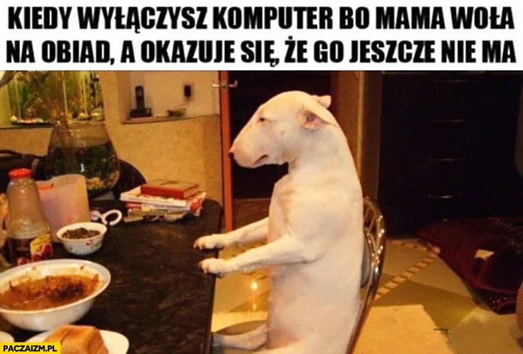 Kiedy wyłączysz komputer bo mama woła na obiad, a okazuje się, że go jeszcze nie ma smutny pies