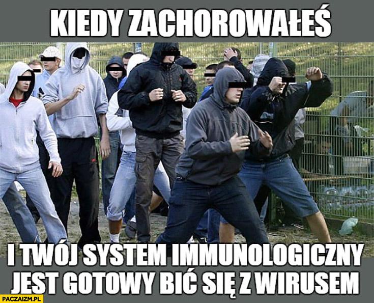 kiedy zachorowałeś i Twój system immunologiczny jest gotowy bić się z wirusem kibice kibole