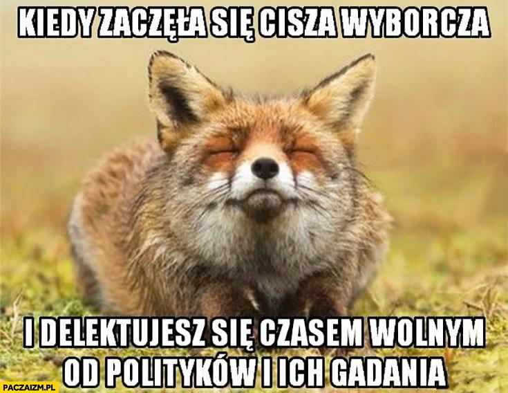 Kiedy zaczęła się cisza wyborcza i delektujesz się czasem wolnym od polityków i ich gadania lis lisek
