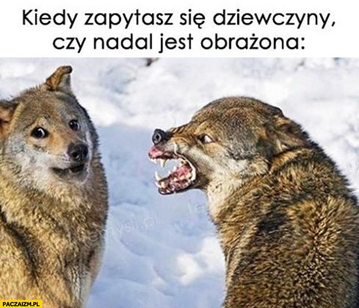 Kiedy zapytasz dziewczyny czy nadal jest obrażona wilki