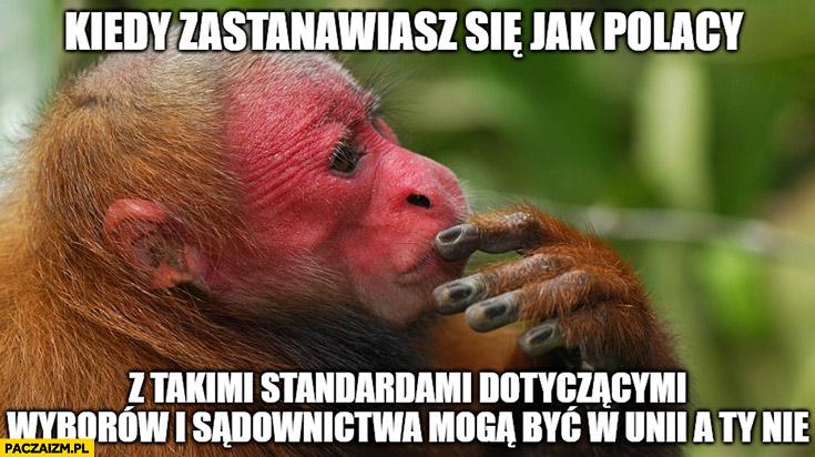 Kiedy zastanawiasz się jak Polacy z takimi standardami dotyczącymi wyborów i sądownictwa mogą być w unii a Ty nie małpa Ukrainiec