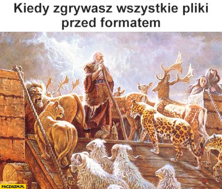Kiedy zgrywasz wszystkie pliki przed formatem zwierzęta wchodzą na Arkę Noego