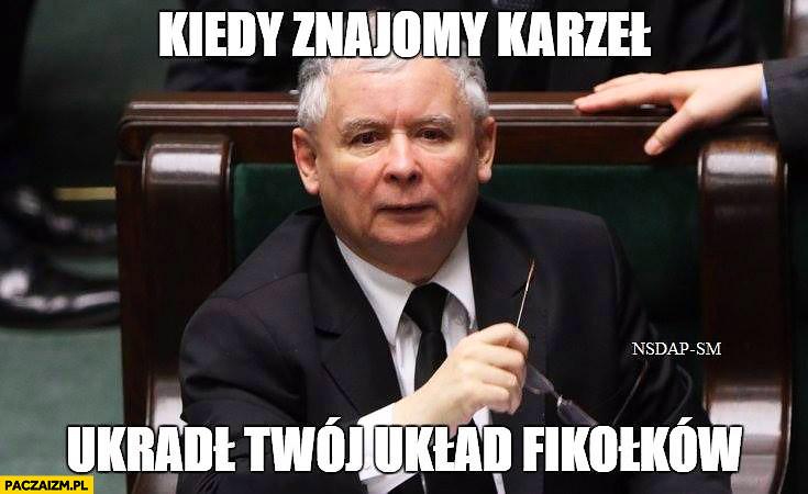 Kiedy znajomy karzeł ukradł Twój układ fikołków Kaczyński