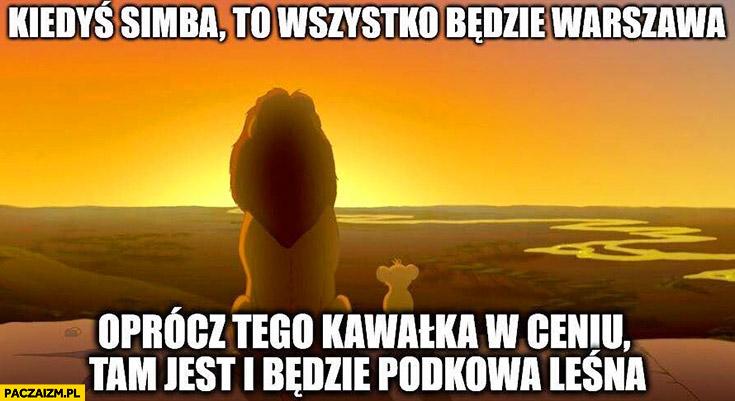 Kiedyś Simba to wszystko będzie Warszawa oprócz tego kawałka w cieniu, tam jest i będzie Podkowa Leśna Król Lew