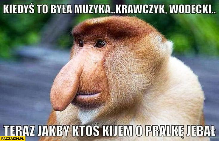 Kiedyś to była muzyka Krawczyk, Wodecki teraz jakby ktoś kijem o pralkę tłukł typowy Polak nosacz małpa