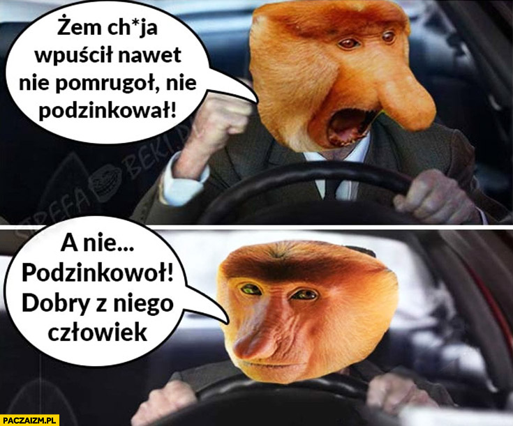 Kierowca żem chama wpuścił nawet nie mrugnął, nie podziękował, a podziękował dobry z niego człowiek typowy Polak nosacz małpa