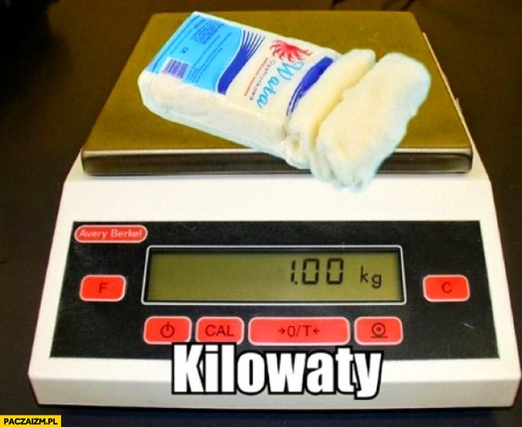 Kilowaty