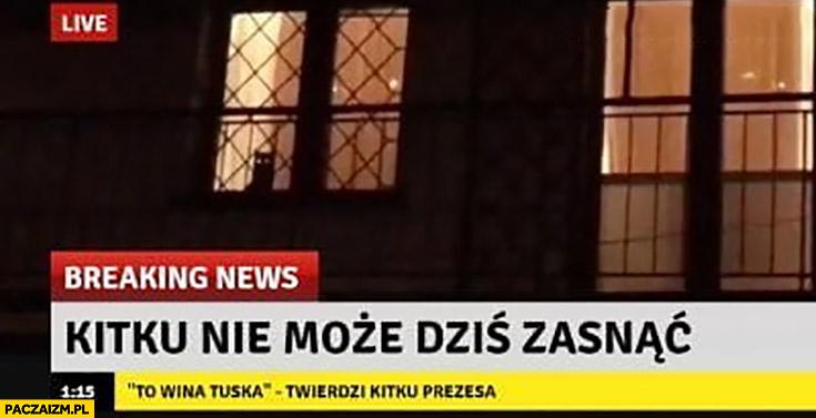 Kitku nie może zasnąć to wina Tuska twierdzi kitku dom Kaczyńskiego