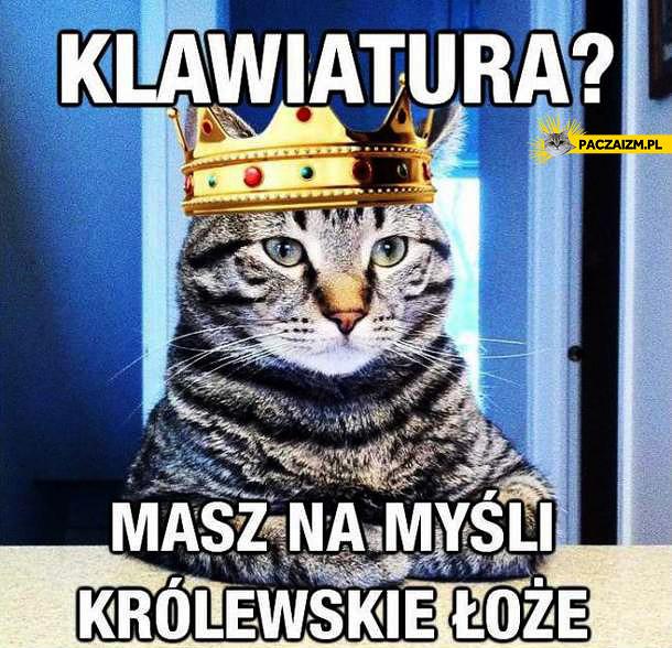 Klawiatura? Masz na myśli królewskie łoże?