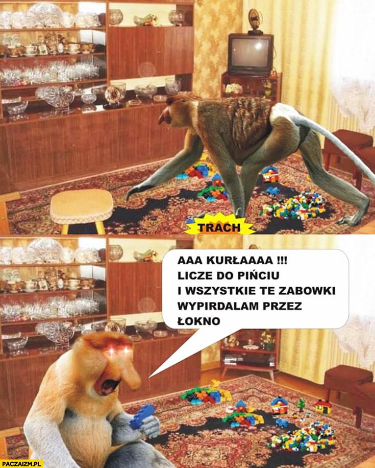 Klocki LEGO na dywanie liczę do pięciu i wszystkie te zabawki wywalam przez okno typowy Polak nosacz małpa
