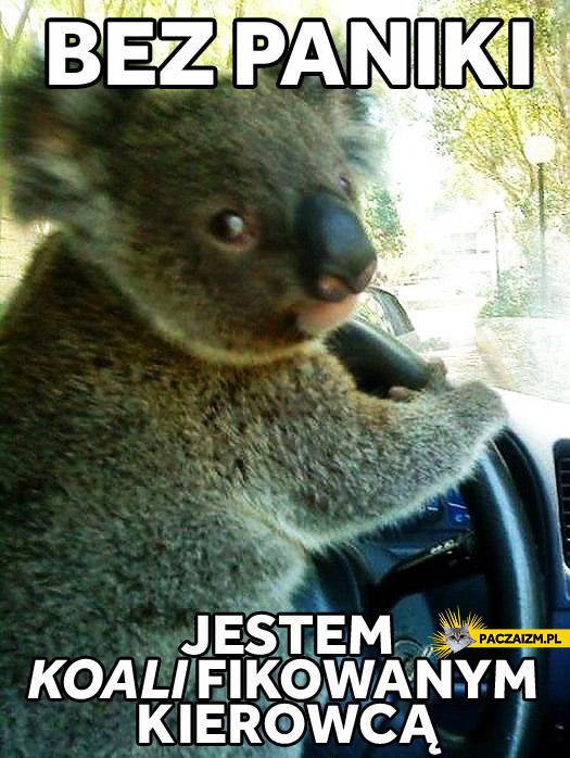 Koalifikowany kierowca