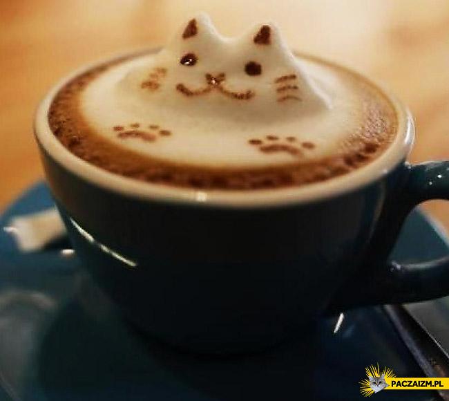Kocie Latte