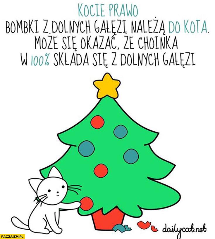Kocie prawo bombki z dolnych gałęzi należą do kota może się okazać, że choinka w 100% składa się z dolnych gałęzi