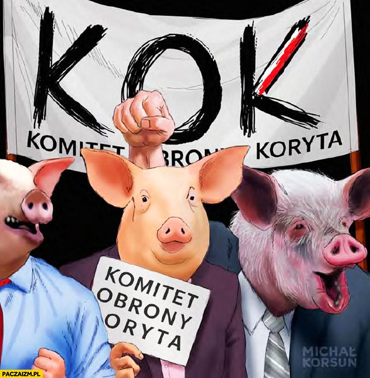 KOK Komitet Obrony Koryta świnie