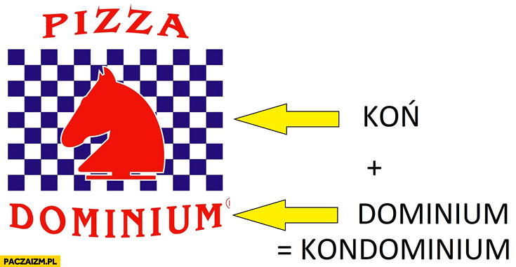 Koń dominium kondominium Pizza Dominium