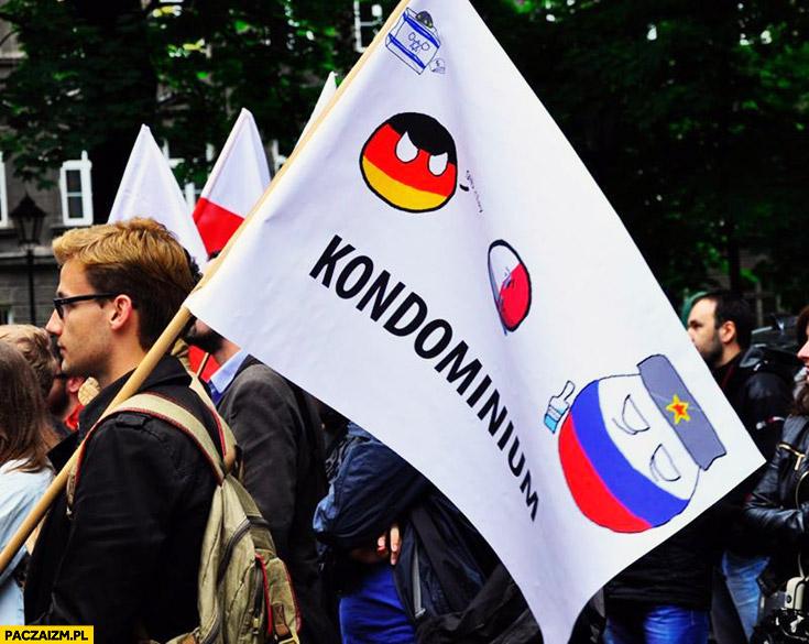 Kondominium flaga na proteście Polandball