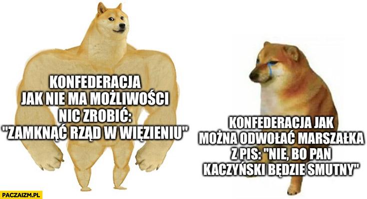 Konfederacja jak nie ma możliwości nic zrobić: zamknąć rząd w wiezieniu vs jak można odwołać marszałka z PiS: nie bo pan Kaczyński będzie smutny pies pieseł doge
