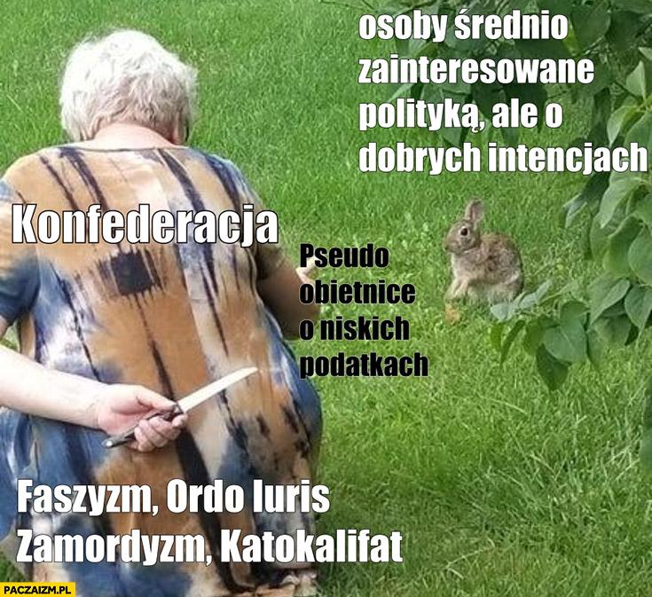 Konfederacja wciska faszyzm, zamordyzm, ordo iuris przez pseudo obietnice o niskich podatkach zając królik