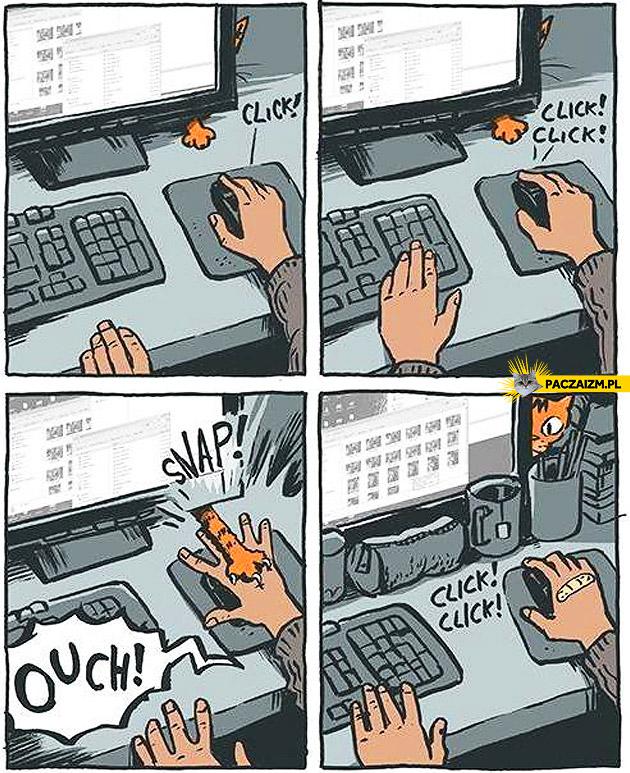 Korzystanie z komputera z kotem