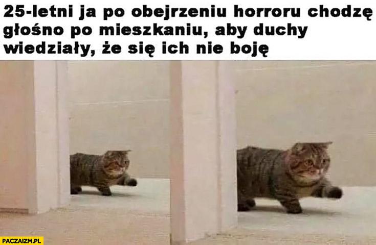 Kot 25-letni ja po obejrzeniu horroru chodzę głośno po mieszkaniu żeby duchy wiedziały, że się ich nie boję